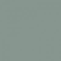 Gris Mercure